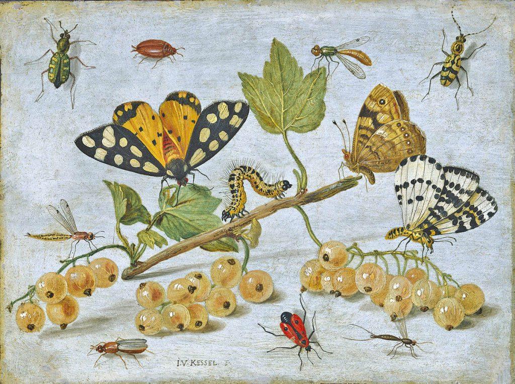 Ecologia dei tarli – potenziale biotico e resistenza ambientale
